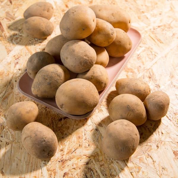 Kartoffeln Linda, festkochend 1kg