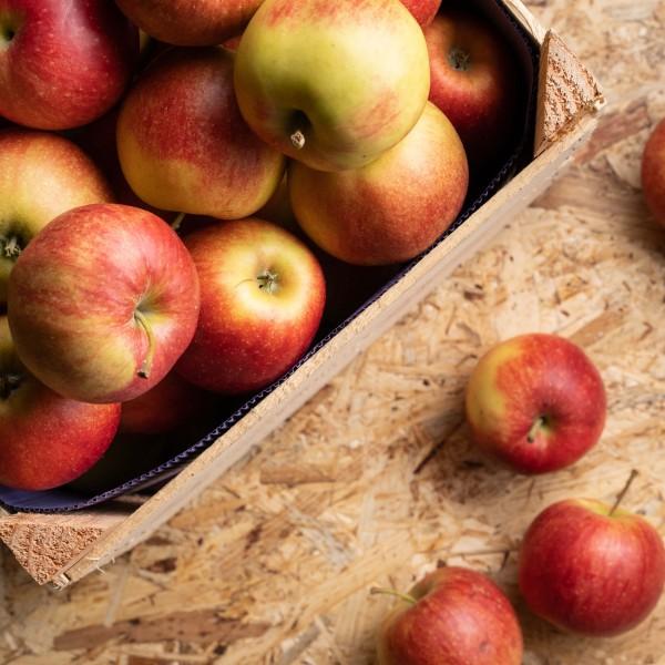 Regionale Äpfel, kg