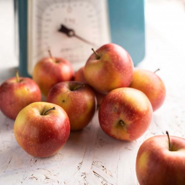Regionale Äpfel (Bio), kg