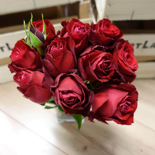 Rosenstrauß, rot