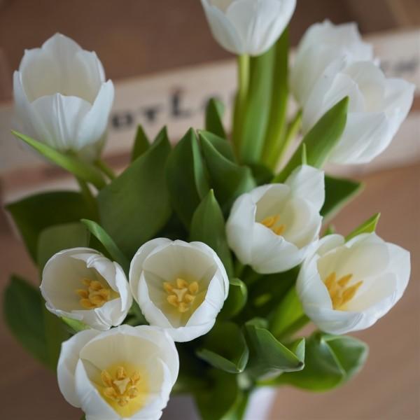 Tulpenstrauß weiß