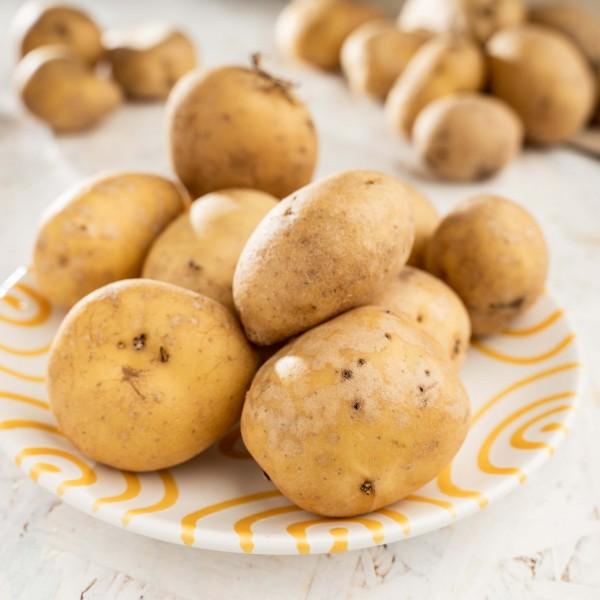 Kartoffeln Linda, festkochend (Bio) 1 kg