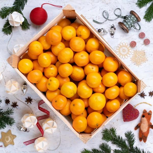 Clementinen Kisten